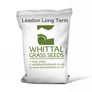 Leadon Long Term