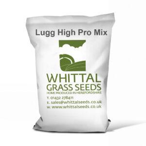 Lugg High Pro – 3 Year