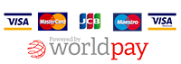 world-logo